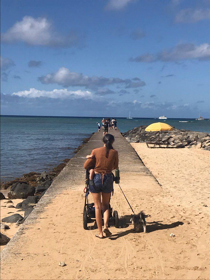 Contea Di Honolulu Hawaii waikiki percorso a piedi - honolulu, hawaii, stati uniti d