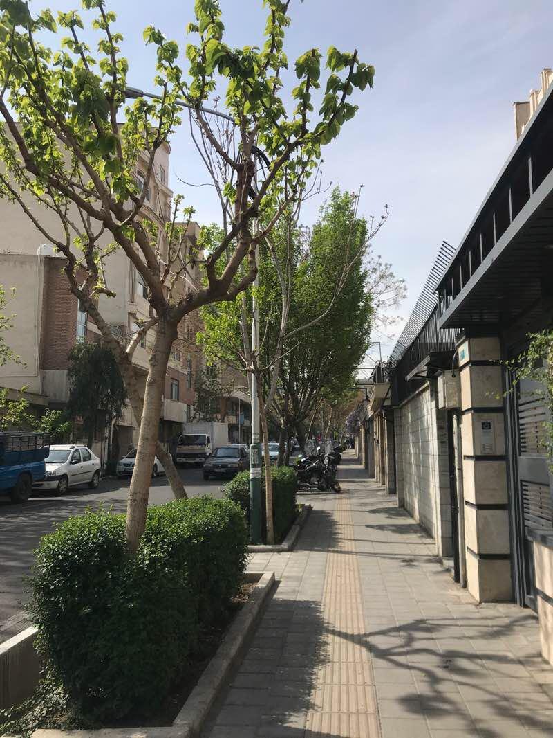 バカラカフェへの私のステップ 散歩道 - テヘラン, テヘラン州, イラン ...