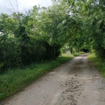 古い鉄道 散歩道 - カストル, タルヌ県, フランス | Pacer